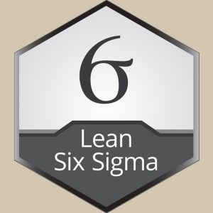 Certbuddyz-Lean six sigma black belt