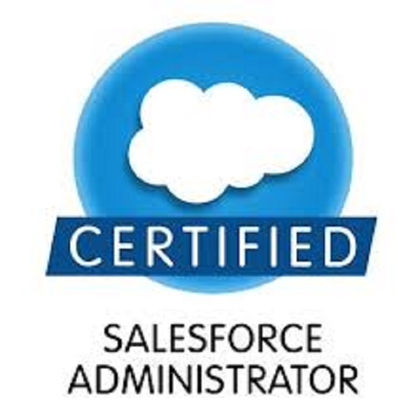 certbuddyz-SALESFORCE-ADMIN-CERTIFICATION